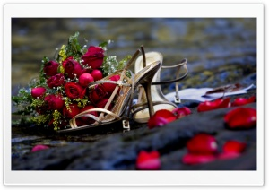 Wedding HD Wide Wallpaper for Widescreen
