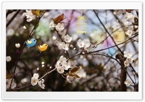 Welcome Spring HD Wide Wallpaper for Widescreen