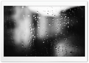 Wet Downfall Ultra HD Wallpaper for 4K UHD Widescreen desktop, tablet & smartphone