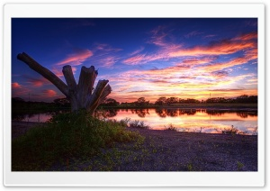 Wetlands Panorama HD Wide Wallpaper for Widescreen