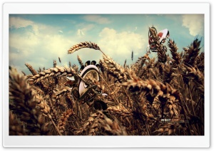 Wheat Hump HD Wide Wallpaper for Widescreen