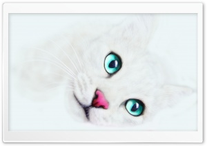 White Cat Background HD Wide Wallpaper for Widescreen