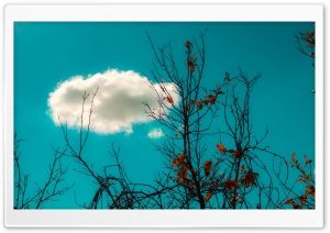White Cloud HD Wide Wallpaper for Widescreen