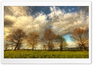 White Clouds, HDR HD Wide Wallpaper for Widescreen