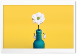 White Daisy in a blue bottle, Yellow Background HD Wide Wallpaper for Widescreen