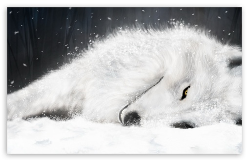 White Fantasy Wolf ❤ 4K UHD Wallpaper for Wide 16:10 5:3 Widescreen WHXGA WQXGA WUXGA WXGA WGA ; 4K UHD 16:9 Ultra High Definition 2160p 1440p 1080p 900p 720p ; Standard 4:3 5:4 3:2 Fullscreen UXGA XGA SVGA QSXGA SXGA DVGA HVGA HQVGA ( Apple PowerBook G4 iPhone 4 3G 3GS iPod Touch ) ; Tablet 1:1 ; iPad 1/2/Mini ; Mobile 4:3 5:3 3:2 16:9 5:4 - UXGA XGA SVGA WGA DVGA HVGA HQVGA ( Apple PowerBook G4 iPhone 4 3G 3GS iPod Touch ) 2160p 1440p 1080p 900p 720p QSXGA SXGA ;
