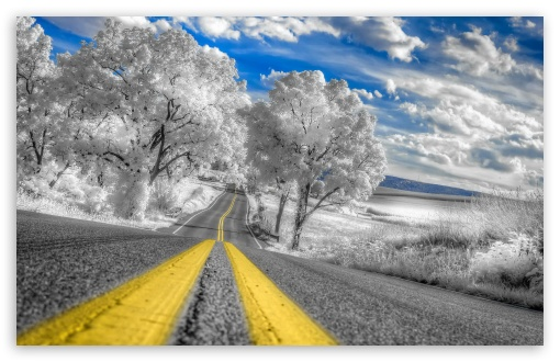 White Infrared Pennsylvania Landscape ❤ 4K UHD Wallpaper for Wide 16:10 5:3 Widescreen WHXGA WQXGA WUXGA WXGA WGA ; 4K UHD 16:9 Ultra High Definition 2160p 1440p 1080p 900p 720p ; Standard 4:3 5:4 3:2 Fullscreen UXGA XGA SVGA QSXGA SXGA DVGA HVGA HQVGA ( Apple PowerBook G4 iPhone 4 3G 3GS iPod Touch ) ; Tablet 1:1 ; iPad 1/2/Mini ; Mobile 4:3 5:3 3:2 16:9 5:4 - UXGA XGA SVGA WGA DVGA HVGA HQVGA ( Apple PowerBook G4 iPhone 4 3G 3GS iPod Touch ) 2160p 1440p 1080p 900p 720p QSXGA SXGA ;
