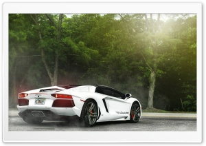 White Lamborghini Miami HD Wide Wallpaper for 4K UHD Widescreen desktop & smartphone