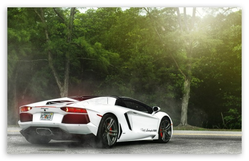 White Lamborghini Miami ❤ 4K UHD Wallpaper for Wide 16:10 5:3 Widescreen WHXGA WQXGA WUXGA WXGA WGA ; 4K UHD 16:9 Ultra High Definition 2160p 1440p 1080p 900p 720p ; Standard 4:3 5:4 3:2 Fullscreen UXGA XGA SVGA QSXGA SXGA DVGA HVGA HQVGA ( Apple PowerBook G4 iPhone 4 3G 3GS iPod Touch ) ; iPad 1/2/Mini ; Mobile 4:3 5:3 3:2 16:9 5:4 - UXGA XGA SVGA WGA DVGA HVGA HQVGA ( Apple PowerBook G4 iPhone 4 3G 3GS iPod Touch ) 2160p 1440p 1080p 900p 720p QSXGA SXGA ;