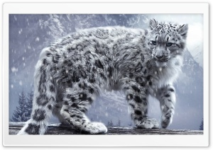White Leopard HD Wide Wallpaper for Widescreen