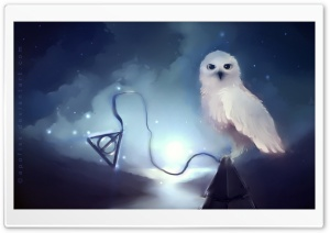 White Owl Painting HD Wide Wallpaper for Widescreen