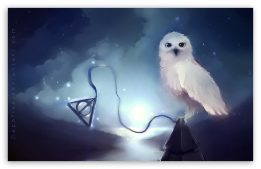 White Owl Painting HD wallpaper for Wide 16:10 5:3 Widescreen WHXGA WQXGA WUXGA WXGA WGA ; HD 16:9 High Definition WQHD QWXGA 1080p 900p 720p QHD nHD ; Standard 3:2 Fullscreen DVGA HVGA HQVGA devices ( Apple PowerBook G4 iPhone 4 3G 3GS iPod Touch ) ; Mobile 5:3 3:2 16:9 - WGA DVGA HVGA HQVGA devices ( Apple PowerBook G4 iPhone 4 3G 3GS iPod Touch ) WQHD QWXGA 1080p 900p 720p QHD nHD ;