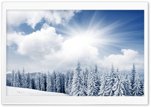 White Paradise HD Wide Wallpaper for Widescreen