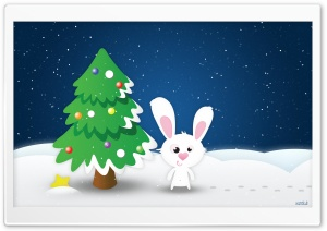 White Rabbit HD Wide Wallpaper for Widescreen
