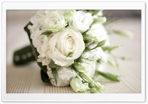 White Roses Bouquet HD Wide Wallpaper for 4K UHD Widescreen desktop & smartphone