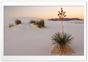 White Sand Desert HD Wide Wallpaper for Widescreen
