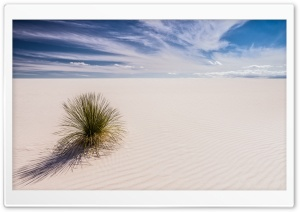 White Sands, New Mexico Ultra HD Wallpaper for 4K UHD Widescreen desktop, tablet & smartphone