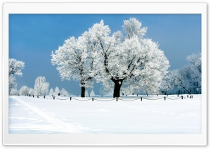 White Scenery HD Wide Wallpaper for Widescreen