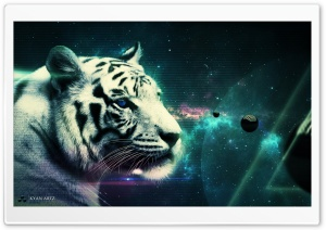 White Tiger Ultra HD Wallpaper for 4K UHD Widescreen desktop, tablet & smartphone