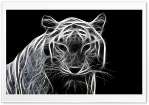 White Tiger 3D HD Wide Wallpaper for 4K UHD Widescreen desktop & smartphone