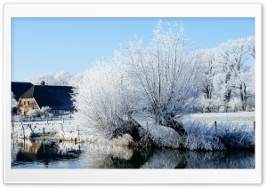 White Trees Along The Kromme Rijn River HD Wide Wallpaper for Widescreen