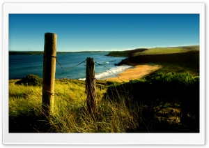 Wild Beach HD Wide Wallpaper for Widescreen