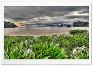 Wild Beach HDR HD Wide Wallpaper for Widescreen