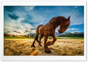 Wild Horse HD Wide Wallpaper for Widescreen