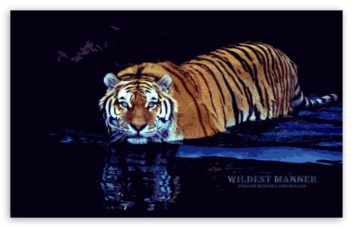 Wildest Manner UltraHD Wallpaper for Wide 16:10 5:3 Widescreen WHXGA WQXGA WUXGA WXGA WGA ; 8K UHD TV 16:9 Ultra High Definition 2160p 1440p 1080p 900p 720p ; Standard 4:3 5:4 3:2 Fullscreen UXGA XGA SVGA QSXGA SXGA DVGA HVGA HQVGA ( Apple PowerBook G4 iPhone 4 3G 3GS iPod Touch ) ; iPad 1/2/Mini ; Mobile 4:3 5:3 3:2 16:9 5:4 - UXGA XGA SVGA WGA DVGA HVGA HQVGA ( Apple PowerBook G4 iPhone 4 3G 3GS iPod Touch ) 2160p 1440p 1080p 900p 720p QSXGA SXGA ;
