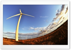 Wind HD Wide Wallpaper for Widescreen