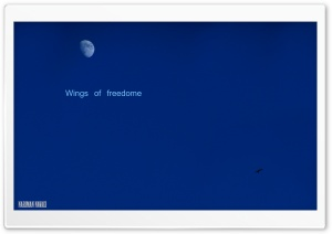Wings of Freedom HD Wide Wallpaper for Widescreen
