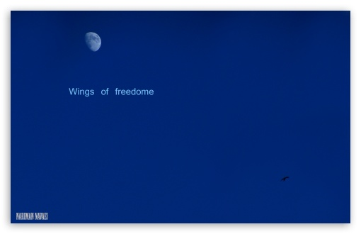 Wings of Freedom HD wallpaper for Wide 16:10 5:3 Widescreen WHXGA WQXGA WUXGA WXGA WGA ; HD 16:9 High Definition WQHD QWXGA 1080p 900p 720p QHD nHD ; UHD 16:9 WQHD QWXGA 1080p 900p 720p QHD nHD ; Standard 4:3 5:4 3:2 Fullscreen UXGA XGA SVGA QSXGA SXGA DVGA HVGA HQVGA devices ( Apple PowerBook G4 iPhone 4 3G 3GS iPod Touch ) ; Tablet 1:1 ; iPad 1/2/Mini ; Mobile 4:3 5:3 3:2 16:9 5:4 - UXGA XGA SVGA WGA DVGA HVGA HQVGA devices ( Apple PowerBook G4 iPhone 4 3G 3GS iPod Touch ) WQHD QWXGA 1080p 900p 720p QHD nHD QSXGA SXGA ;