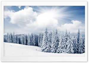 Winter HD Wide Wallpaper for 4K UHD Widescreen desktop & smartphone