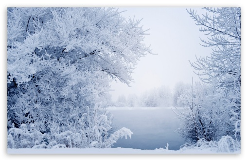 Winter HD wallpaper for Wide 16:10 5:3 Widescreen WHXGA WQXGA WUXGA WXGA WGA ; HD 16:9 High Definition WQHD QWXGA 1080p 900p 720p QHD nHD ; Standard 4:3 5:4 3:2 Fullscreen UXGA XGA SVGA QSXGA SXGA DVGA HVGA HQVGA devices ( Apple PowerBook G4 iPhone 4 3G 3GS iPod Touch ) ; Tablet 1:1 ; iPad 1/2/Mini ; Mobile 4:3 5:3 3:2 16:9 5:4 - UXGA XGA SVGA WGA DVGA HVGA HQVGA devices ( Apple PowerBook G4 iPhone 4 3G 3GS iPod Touch ) WQHD QWXGA 1080p 900p 720p QHD nHD QSXGA SXGA ;