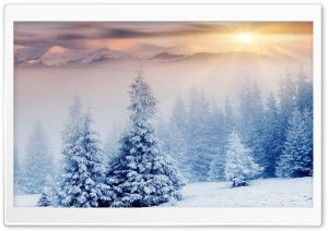 Winter HD Wide Wallpaper for Widescreen