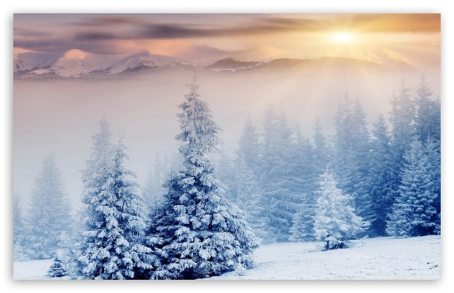 Winter ❤ 4K UHD Wallpaper for Wide 16:10 5:3 Widescreen WHXGA WQXGA WUXGA WXGA WGA ; 4K UHD 16:9 Ultra High Definition 2160p 1440p 1080p 900p 720p ; Standard 4:3 5:4 3:2 Fullscreen UXGA XGA SVGA QSXGA SXGA DVGA HVGA HQVGA ( Apple PowerBook G4 iPhone 4 3G 3GS iPod Touch ) ; Smartphone 5:3 WGA ; Tablet 1:1 ; iPad 1/2/Mini ; Mobile 4:3 5:3 3:2 16:9 5:4 - UXGA XGA SVGA WGA DVGA HVGA HQVGA ( Apple PowerBook G4 iPhone 4 3G 3GS iPod Touch ) 2160p 1440p 1080p 900p 720p QSXGA SXGA ;