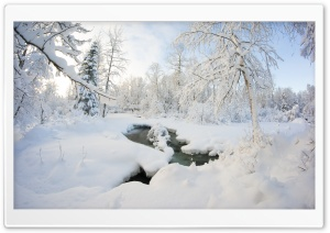 Winter, Alaska HD Wide Wallpaper for Widescreen