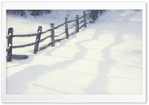 Winter Beauty HD Wide Wallpaper for Widescreen