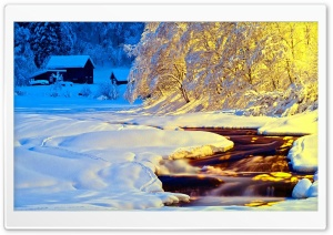 Winter Blue and Yellow HD Wide Wallpaper for Widescreen