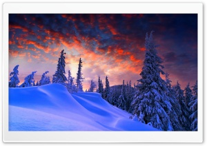 Winter Christmas HD Wide Wallpaper for Widescreen