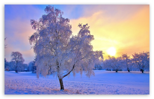 Winter Evening Light HD wallpaper for Standard 4:3 5:4 Fullscreen UXGA XGA SVGA QSXGA SXGA ; Wide 16:10 5:3 Widescreen WHXGA WQXGA WUXGA WXGA WGA ; HD 16:9 High Definition WQHD QWXGA 1080p 900p 720p QHD nHD ; Other 3:2 DVGA HVGA HQVGA devices ( Apple PowerBook G4 iPhone 4 3G 3GS iPod Touch ) ; Mobile VGA WVGA iPhone iPad PSP Phone - VGA QVGA Smartphone ( PocketPC GPS iPod Zune BlackBerry HTC Samsung LG Nokia Eten Asus ) WVGA WQVGA Smartphone ( HTC Samsung Sony Ericsson LG Vertu MIO ) HVGA Smartphone ( Apple iPhone iPod BlackBerry HTC Samsung Nokia ) Sony PSP Zune HD Zen ; Tablet 2 Android 3 DVGA HVGA HQVGA devices ( Apple PowerBook G4 iPhone 4 3G 3GS iPod Touch ) ;