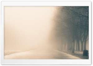 Winter Fog HD Wide Wallpaper for Widescreen