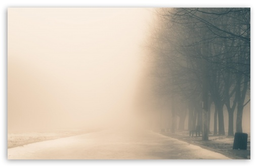 Winter Fog HD wallpaper for Wide 16:10 5:3 Widescreen WHXGA WQXGA WUXGA WXGA WGA ; HD 16:9 High Definition WQHD QWXGA 1080p 900p 720p QHD nHD ; Standard 4:3 5:4 3:2 Fullscreen UXGA XGA SVGA QSXGA SXGA DVGA HVGA HQVGA devices ( Apple PowerBook G4 iPhone 4 3G 3GS iPod Touch ) ; Tablet 1:1 ; iPad 1/2/Mini ; Mobile 4:3 5:3 3:2 16:9 5:4 - UXGA XGA SVGA WGA DVGA HVGA HQVGA devices ( Apple PowerBook G4 iPhone 4 3G 3GS iPod Touch ) WQHD QWXGA 1080p 900p 720p QHD nHD QSXGA SXGA ;