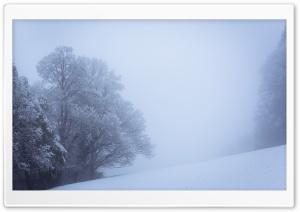 Winter Fog, Snowy Trees, Landscape HD Wide Wallpaper for 4K UHD Widescreen desktop & smartphone