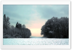 Winter Glow HD Wide Wallpaper for Widescreen