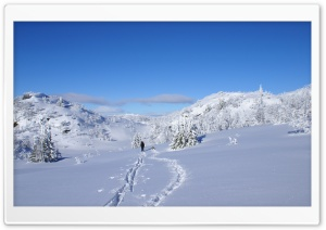 Winter Hiking HD Wide Wallpaper for Widescreen