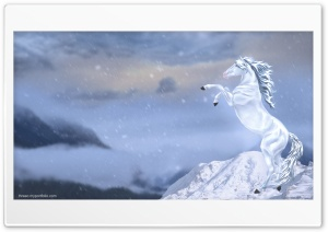 Winter Horse HD Wide Wallpaper for 4K UHD Widescreen desktop & smartphone
