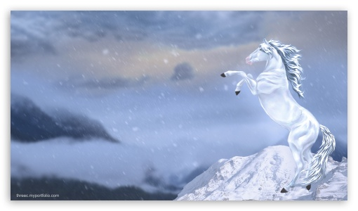 Winter Horse 4k Hd Desktop Wallpaper For 4k Ultra Hd Tv