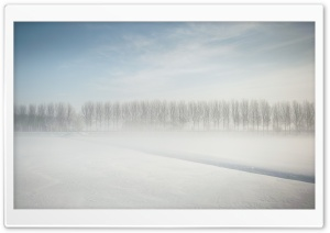 Winter in Holland HD Wide Wallpaper for Widescreen