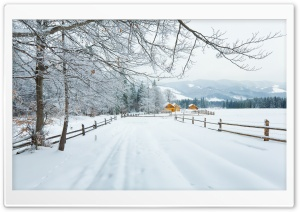 Winter In The Carpathians HD Wide Wallpaper for Widescreen